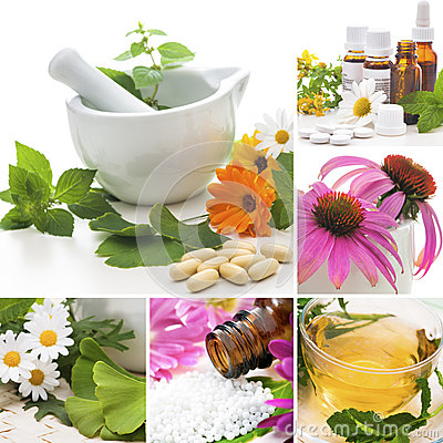 Bach flower healing sessions. These remedies help heal emotions..