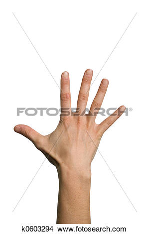 Stock Photo of Open back hand k0603294.