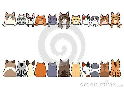 Cute cats border set, various breed, front side and back.