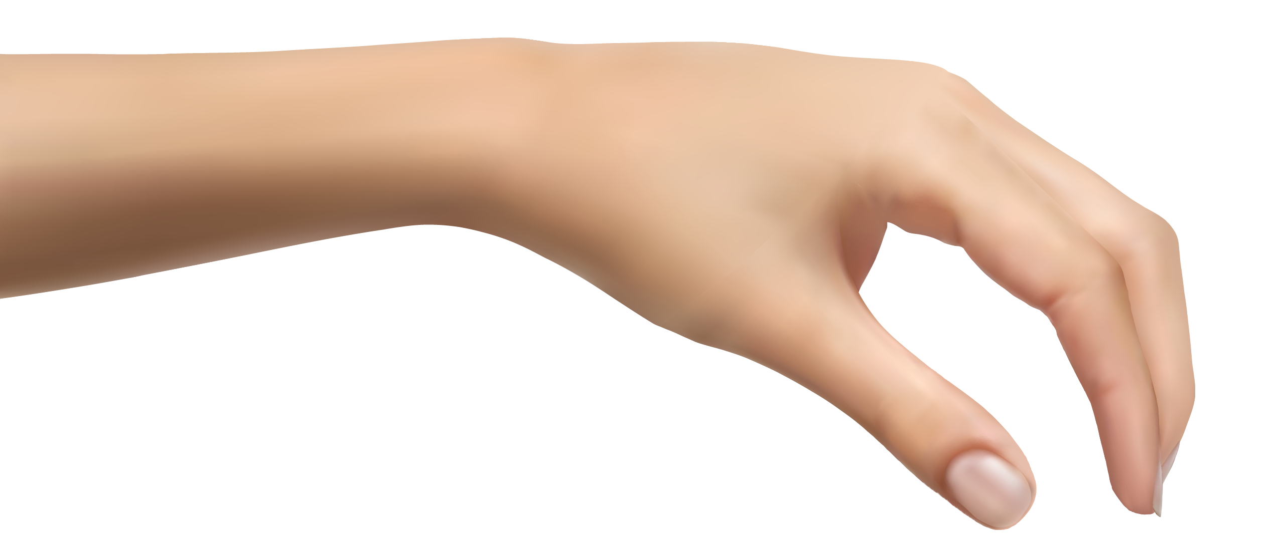Human Hand PNG Clipart Picture.