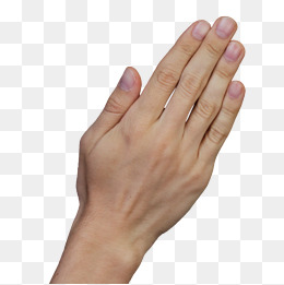 Back Of Hand Png (104+ images in Collection) Page 2.