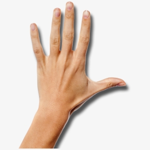 Back Of Hand Png PNG Images.