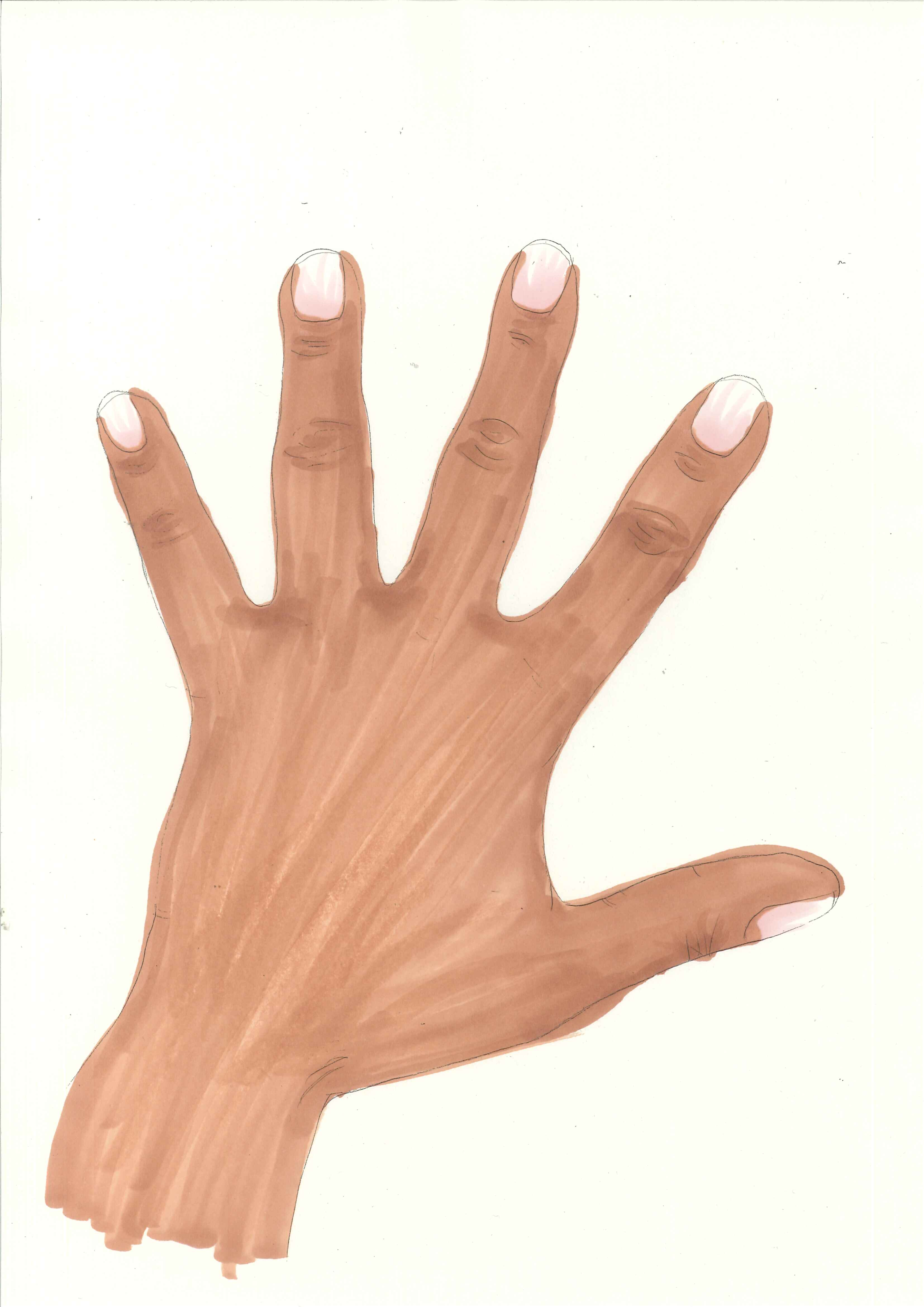 Back Of Hand Clipart.