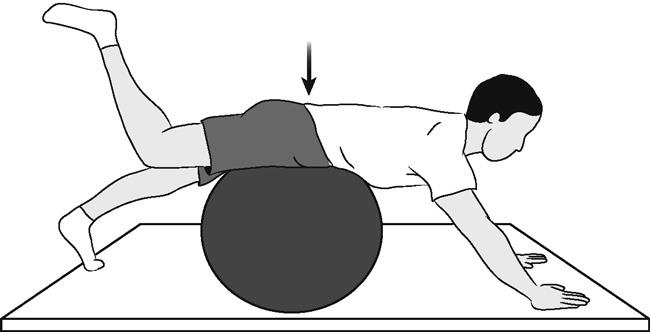 Low Back Surgery Exercise Guide.