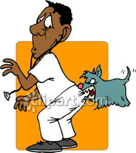 Dog Biting a Veterinarian In the Backside Royalty Free Clipart Picture.