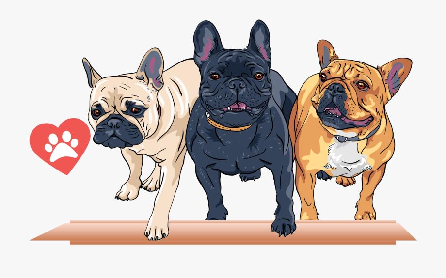 French Bulldog T Shirt Stock Photography Cartoon.