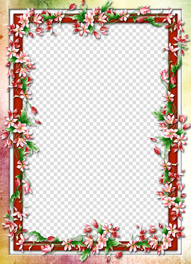 Red flowers background, Flower, Floral border design.