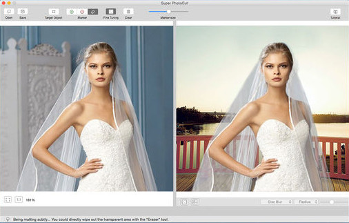 Best 20 Photo Background Removers 2018.