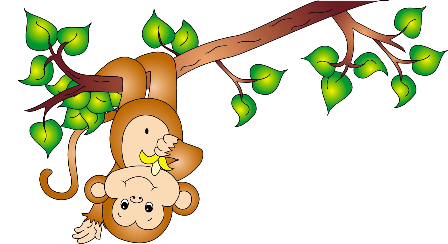 Cute Cartoon Monkey PNG Image Background.