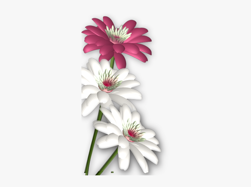 Massages Clipart Abstract Flower.