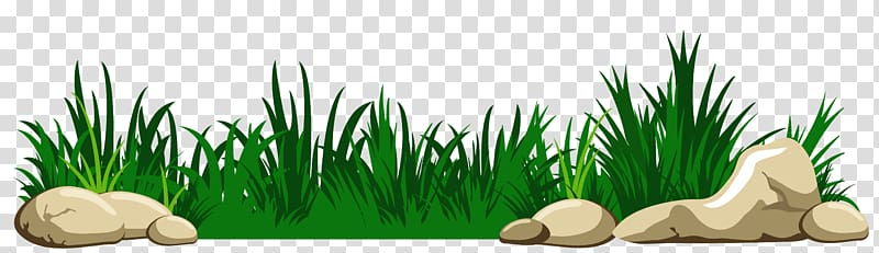 Grass with Rocks , animated green grass transparent background PNG.