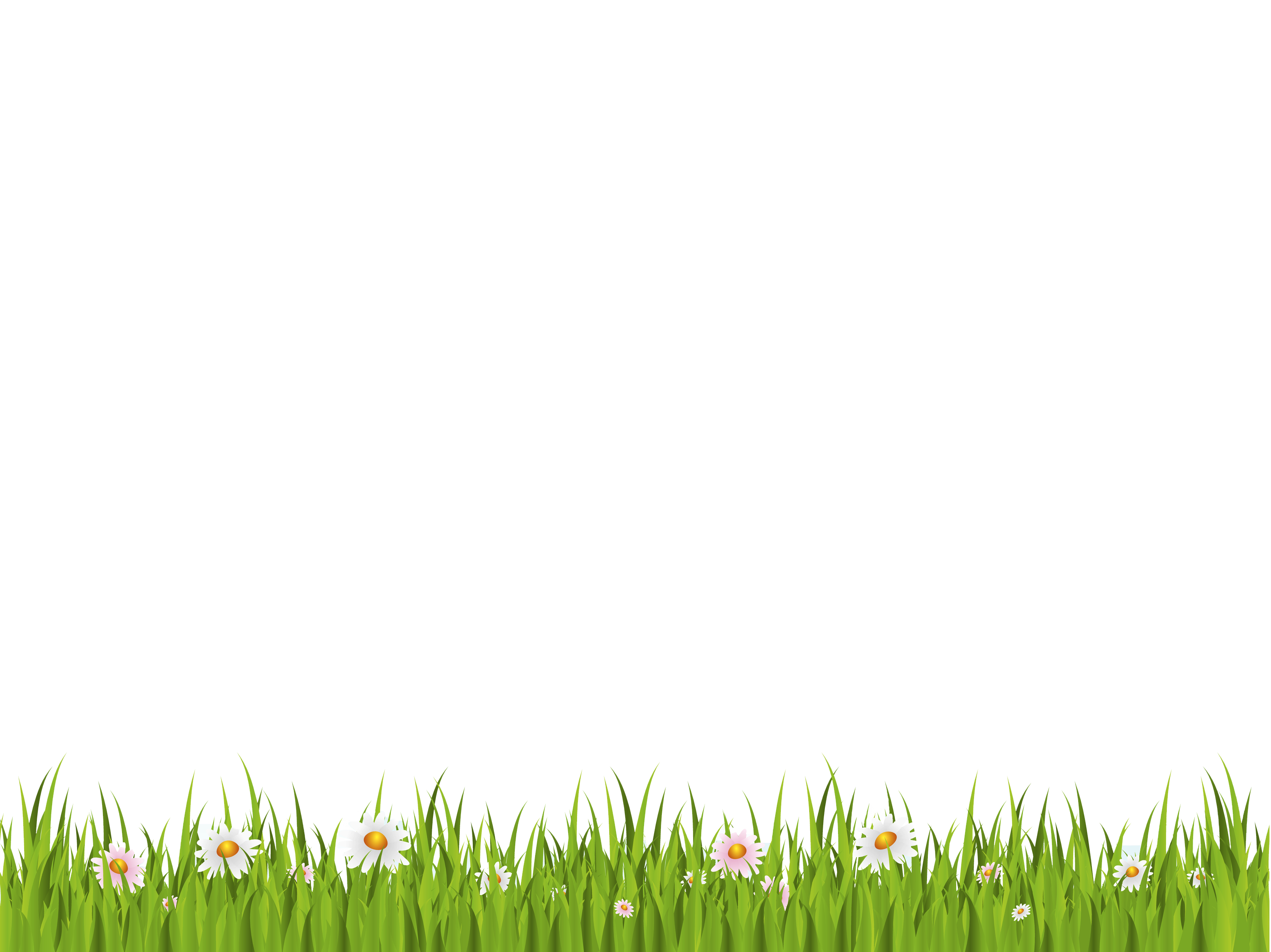 Download Green Background PNG Clipart.