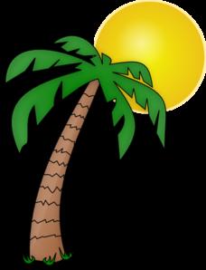 Pics For > Cartoon Island With Palm Tree.