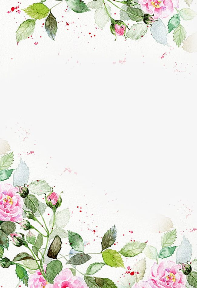 Pink Floral Background PNG, Clipart, Background, Beautiful.