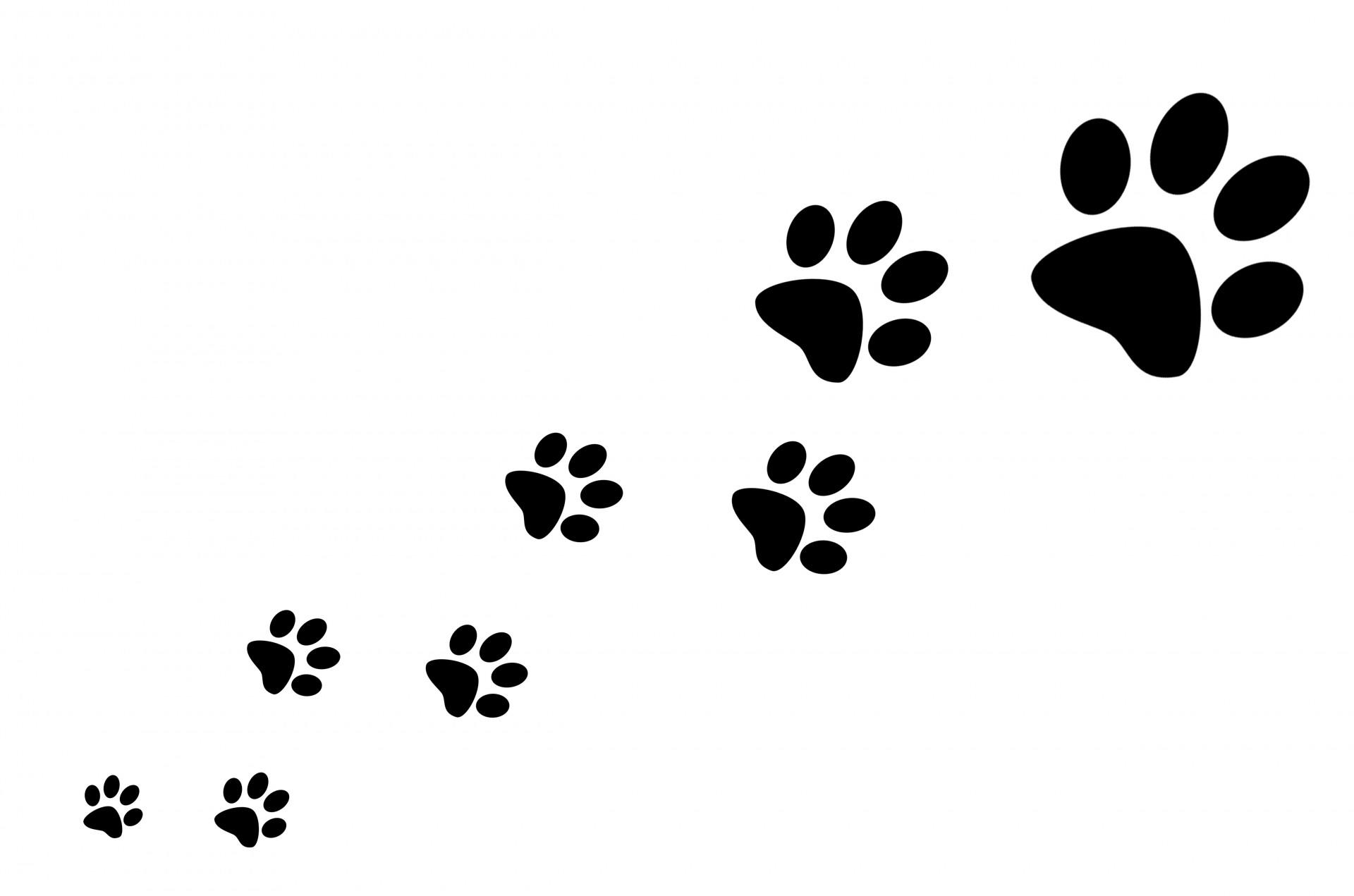 Dog Cat Paw Silhouette Clip art.