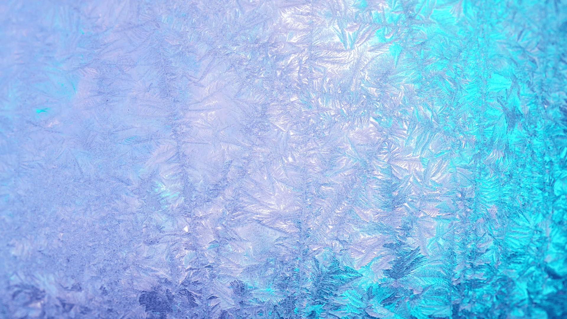 Frozen Backgrounds.