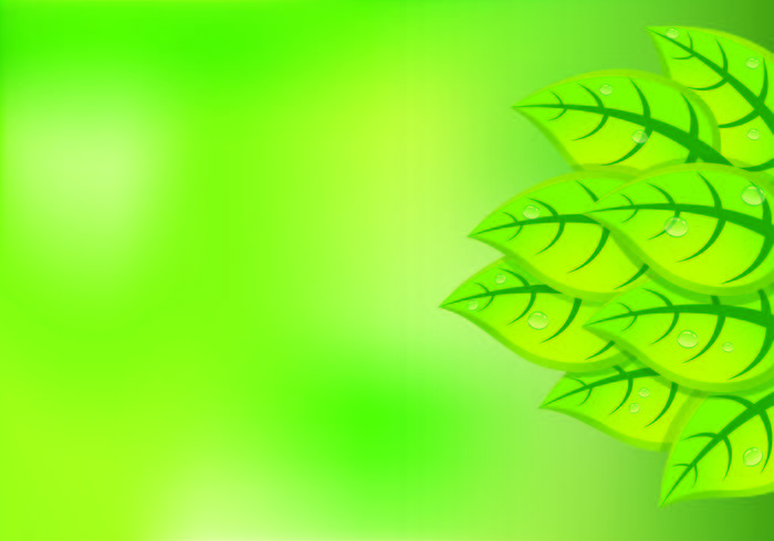 Background Of Natural Green Leaves.