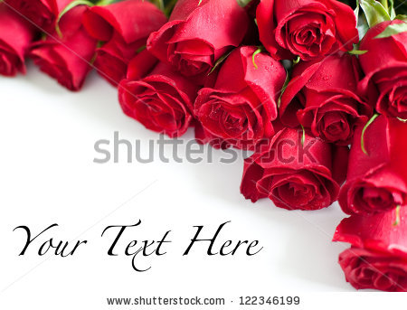 Roses Background Stock Images, Royalty.