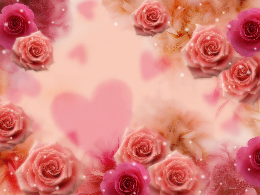 25+ Roses Background, Wallpapers, Images, Pictures.