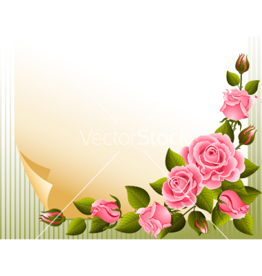 Background Images Of Roses.