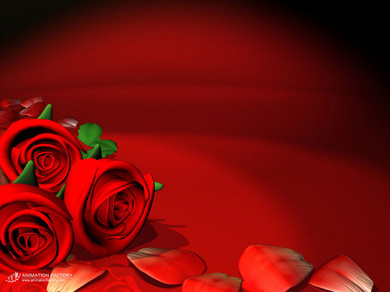35+ Roses Background Wallpaper, HD Roses Wallpapers and Photos.