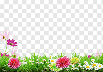 Poster Background cutout PNG & clipart images.