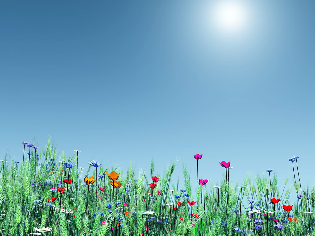 Spring desktop clipart backgrounds.