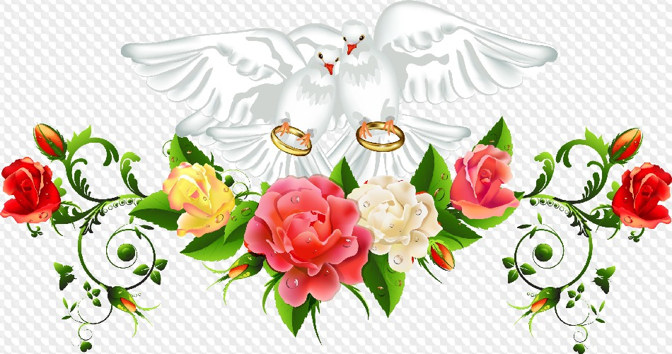 PSD, 15 PNG, Wedding doves, wedding rings, graphics on transparent.