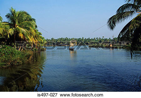 Picture of Kerala backwaters is497.
