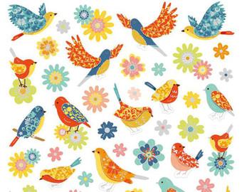 Backyard birds.