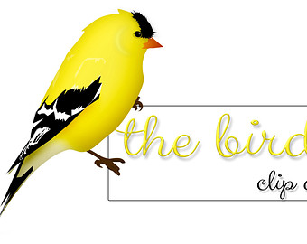 Gallery For > Bird in Back Yard Clipart.