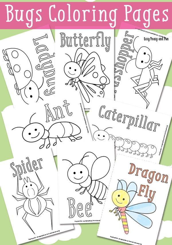 Little Bugs Coloring Pages for Kids.