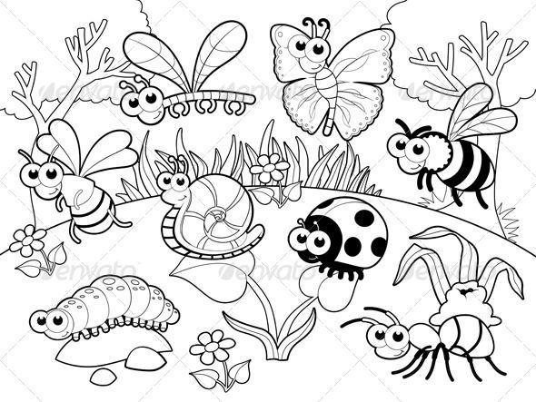 Bugs and a Snail.