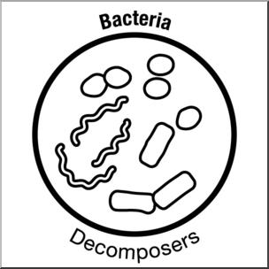 Clip Art: Soil Ecology Icons: Bacteria B&W I abcteach.com.