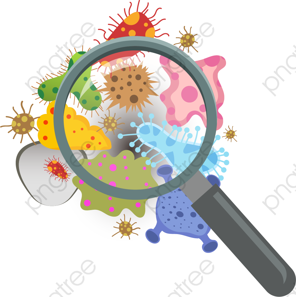 Aggregation Of Bacteria, Bacteria, Fungus, Flora PNG and Vector with.