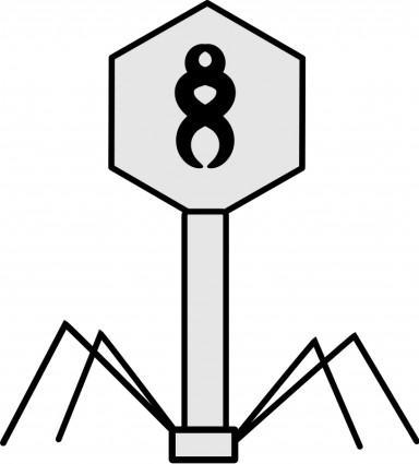 Phage Clip Art Download.