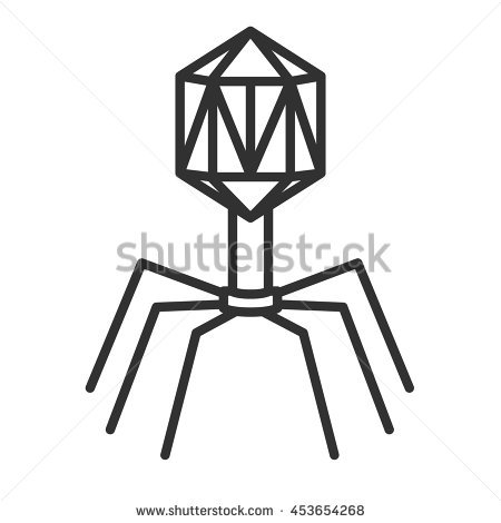 Bacteriophage Stock Photos, Royalty.