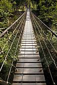 "Stock Photograph of ""Suspension bridge along the Waldskulpturenweg."