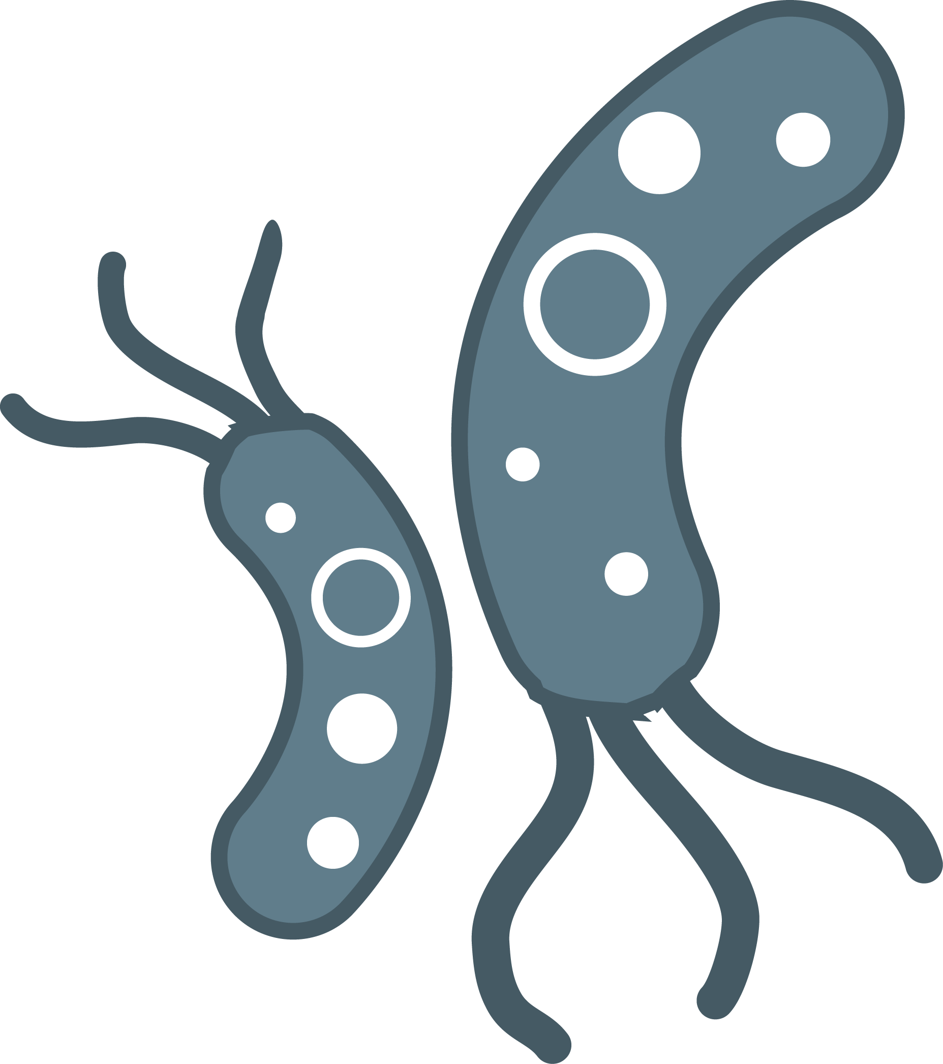 The best free Bacteria clipart images. Download from 59 free.