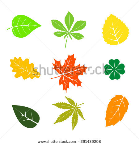 Leaf Stock Images, Royalty.