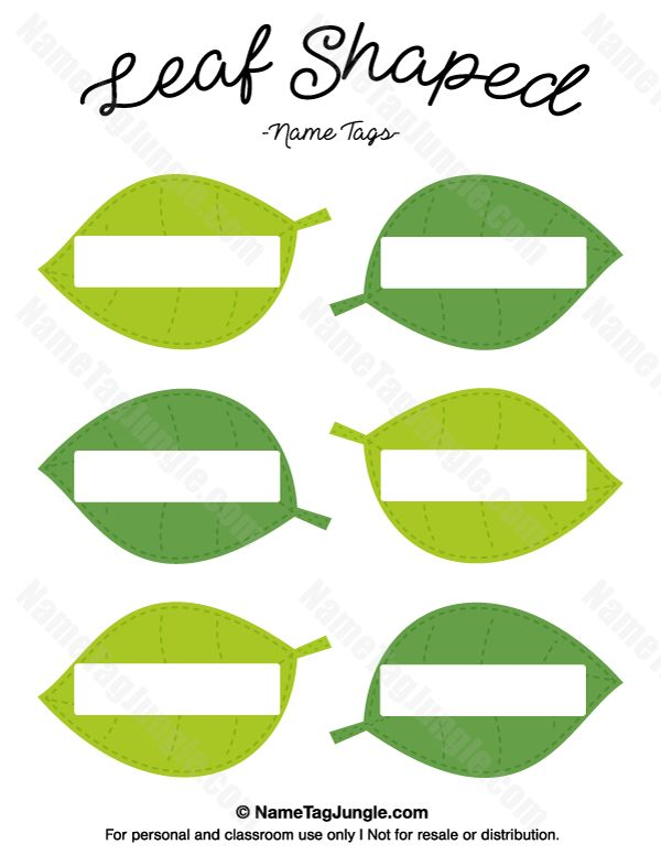 Bade shaped leaves clipart 20 free Cliparts   Download