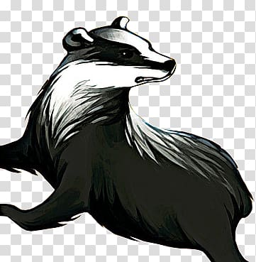 Black and white animal sketch, Badger transparent background.