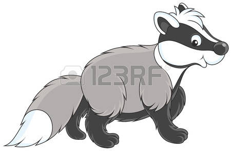 893 Badger Stock Vector Illustration And Royalty Free Badger Clipart.
