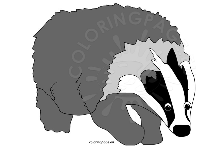 Cartoon Badger Clipart.