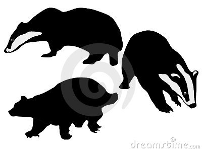Silhouettes Of Badgers Stock Photo.