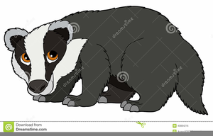 Badger Clipart Free.