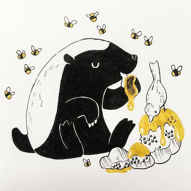 Honey badger and honeyguide pals. The honeyguideaka.