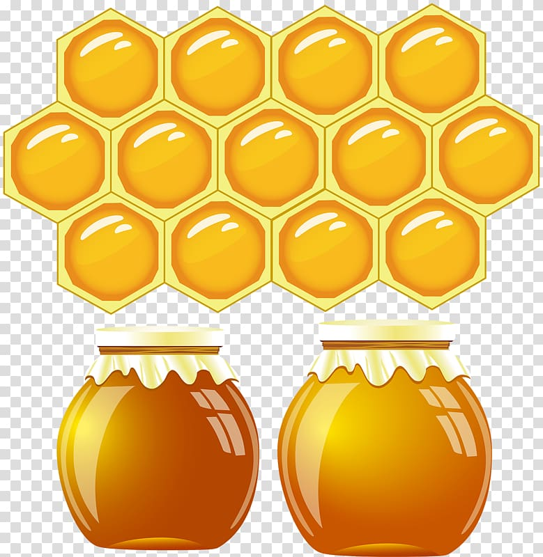 Honey Bee Drawing transparent background PNG cliparts free.