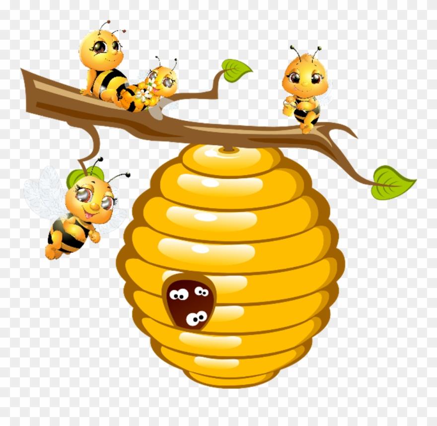 bees #hive #honey.