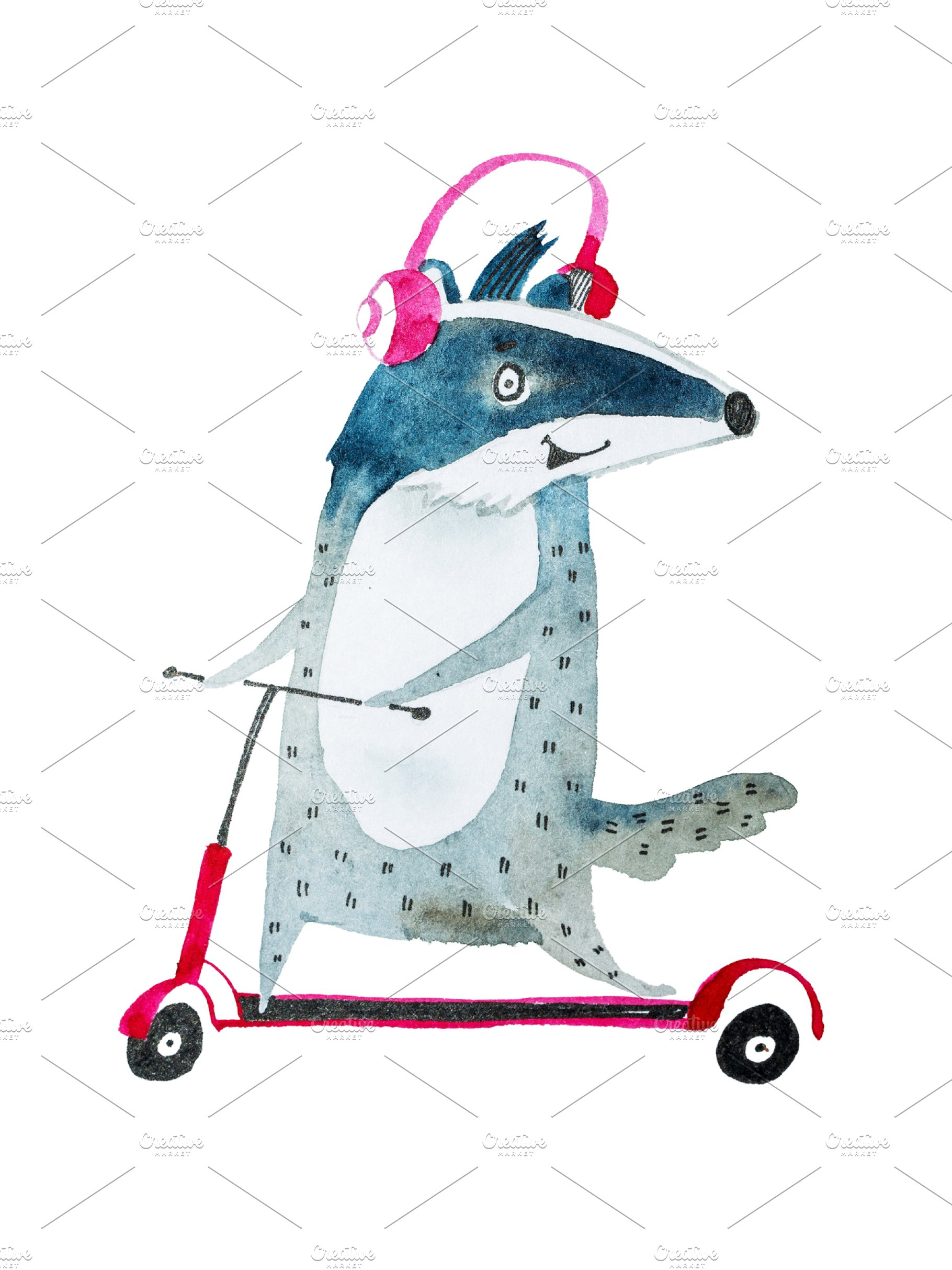 Cool positive badger listening to music in headphones while riding on a  scooter hand.